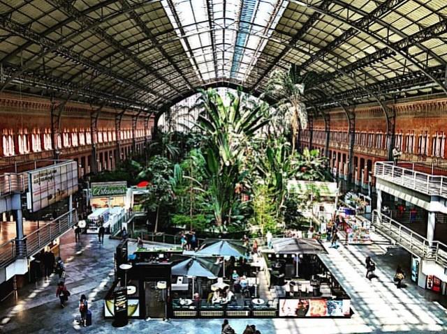 Estación Atocha #madrid #transportation #travel #renfe #trainstation #train #españa #spain #architecture #architectura