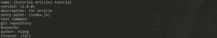 npm-init