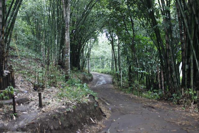 Main di Malang - Andeman - Kebun Bambu