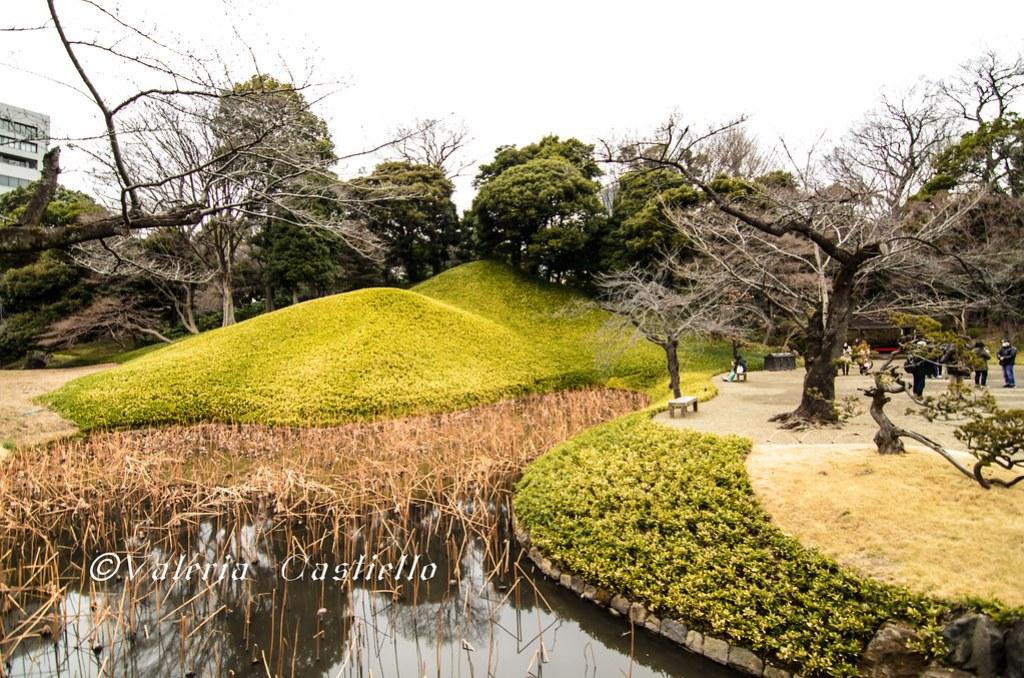Il giardino Koishikawa Korakuen a Tokyo: i turisti si contavano sulla punta delle dita - Giappone tra febbraio e marzo