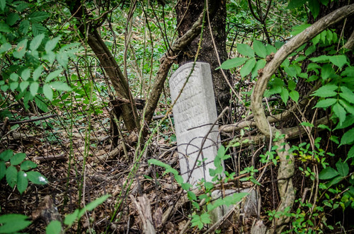 Brandon Mill Cemetery Cleanup-37