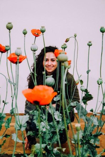 Poppy Field, Roxy Paine