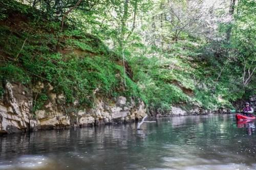 Turkey and Stevens Creeks-34
