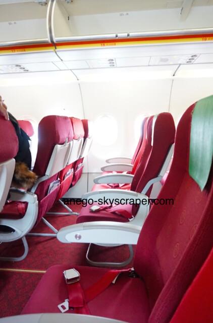 香港エクスプレス 香港航空の機体