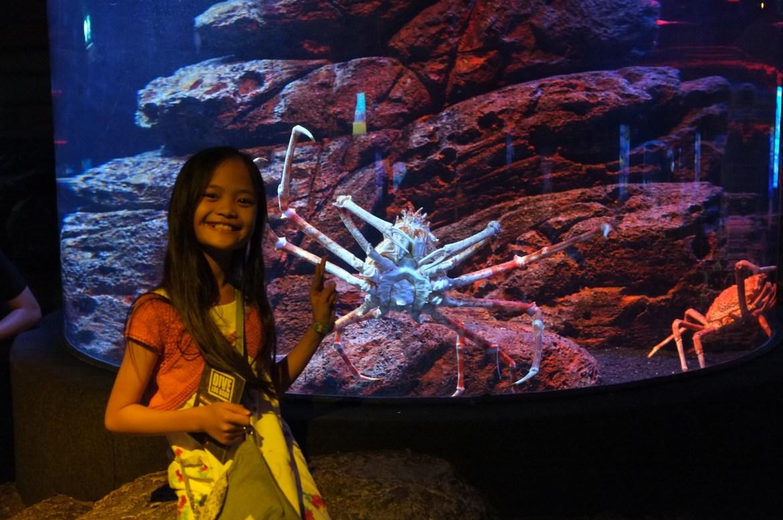 at the Sea Life Bangkok Ocean World