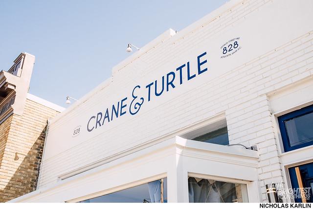 Crane and Turtle-33