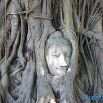 02 Lucia Viajefilos en Ayutthaya01