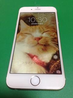 51_iPhone6のフロントパル液晶割れ