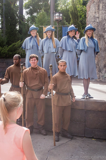Beauxbatons and Durmstrang Harry Potter World