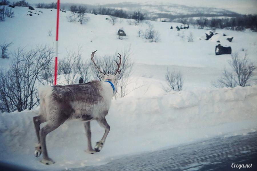 2016.02.23  看我歐行腿   阿呀~一不小心就從瑞典到了挪威, Narvik 小鎮遇見地理課本中的峽灣 09.jpg
