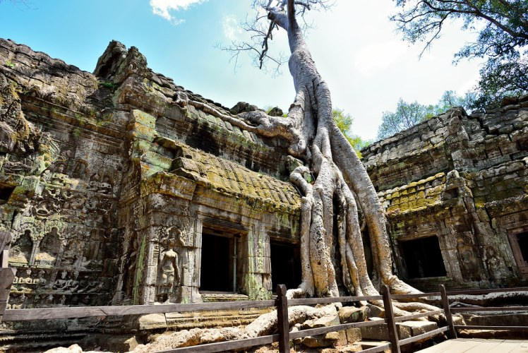 I came to Cambodia for this famous shot!