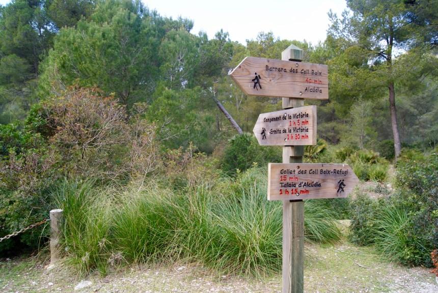 Excursión península de Alcudia.