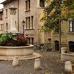 01 Viajefilos en Ginebra, Suiza 27