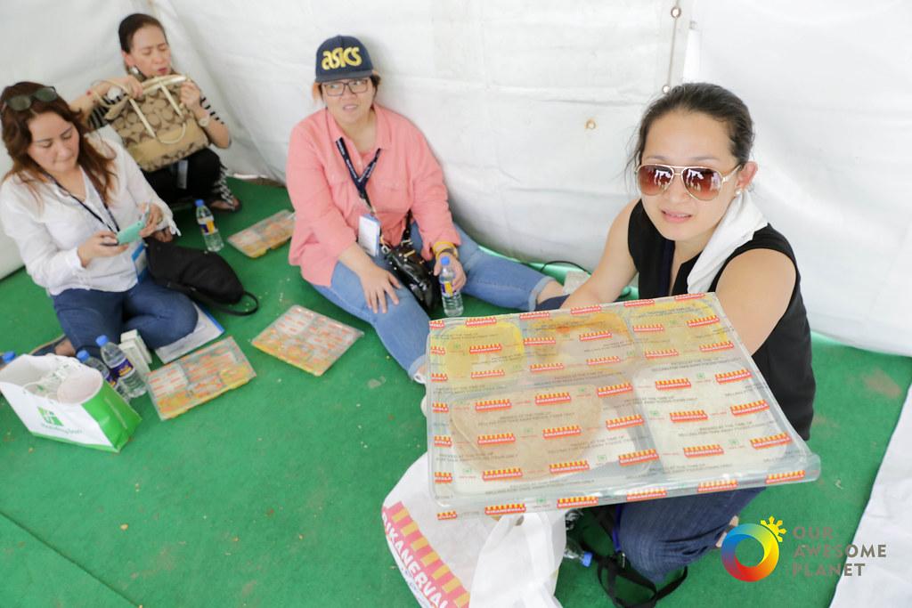 World Culture Festival-62.jpg