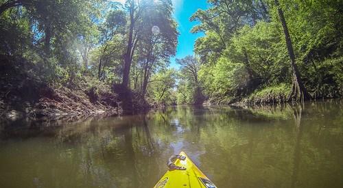 04-09-2016 Turkey Creek and Stevens Creek