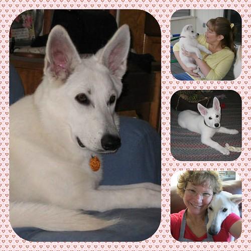 Lili Birthday Collage