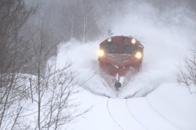 DE15-2521 Snow plow