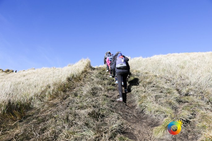 The Hike to the Summit-148.jpg