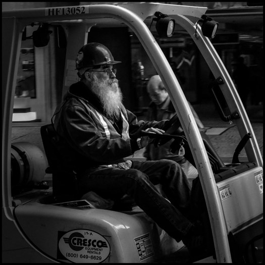 The Beard - San Francisco - 2016