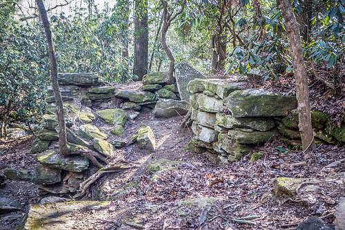 Pleasant Ridge Park-18