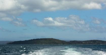 Ferry au départ d'Oban (Rakiura / Stewart Island)