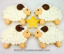 Cuddly rams