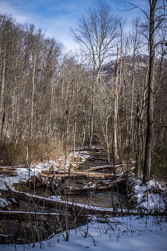 Greenville Watershed-004
