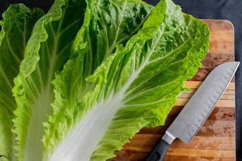 closeup of napa cabbage