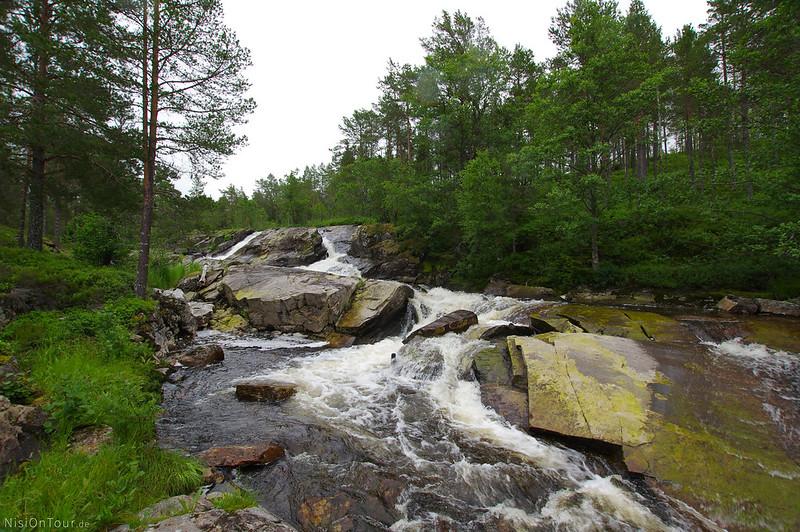Bølareinen/ Steinkjer