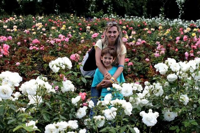 5 jardines y parques para pasear relajadamente 5 jardins i for Jardin islamico