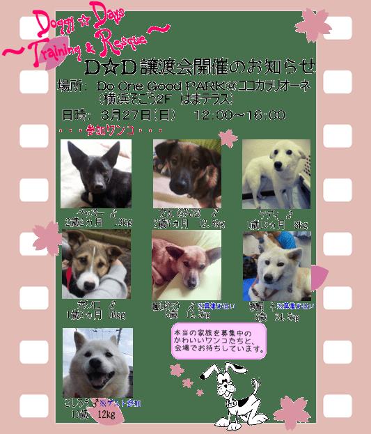 20160327_satooyakai_dd