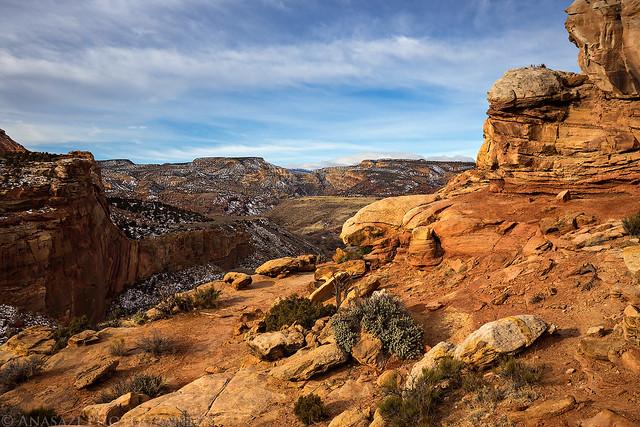 Hickman Trail View
