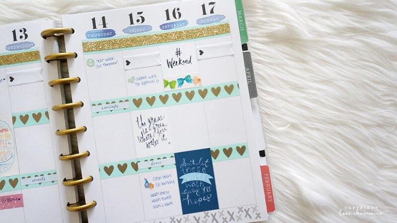 Plan With Me Sunday | Week 2 of 2016 | LoveCharmaine.com