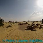 04 Viajefilos en Jaisalmer 28