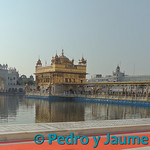 02 Viajefilos en Amritsar 08