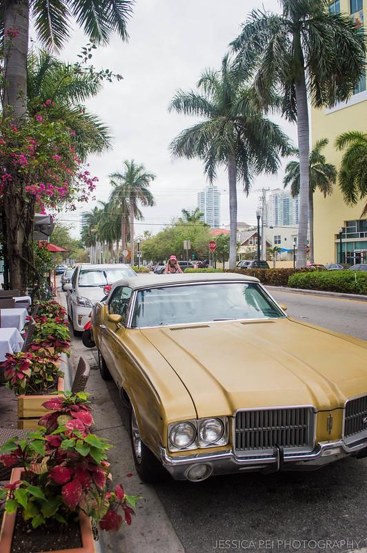Miami Beach Car