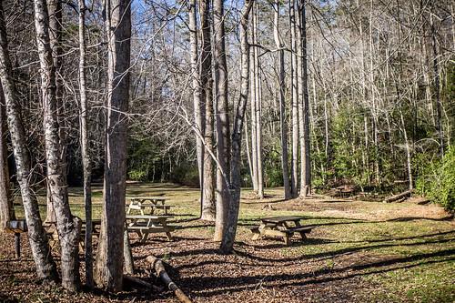 Pleasant Ridge Park-40