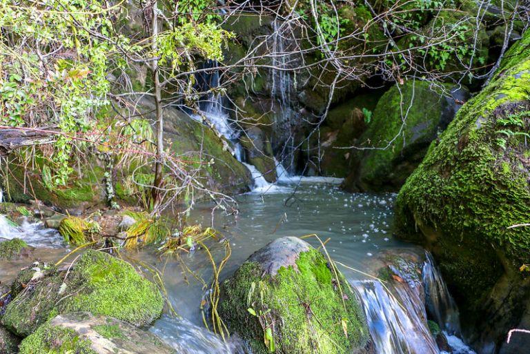 01.10. Peter Creek Falls hike