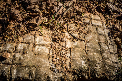 Brick Remnants on Swamp Rabbit Trail-001