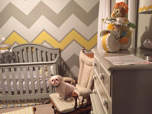 Adding Changing Table