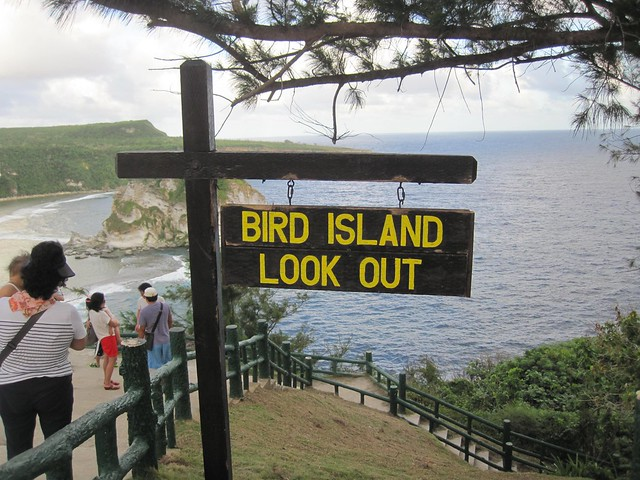 Picture from the Bird Island Lookout