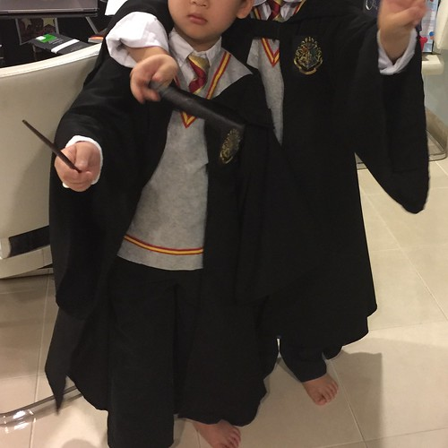 Harry Potter Dress Up DIY