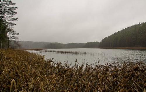 Sėtikio ežeras