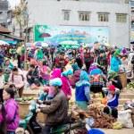 Photo Essay: Bac Ha Sunday Market