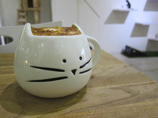 meow-bar-10