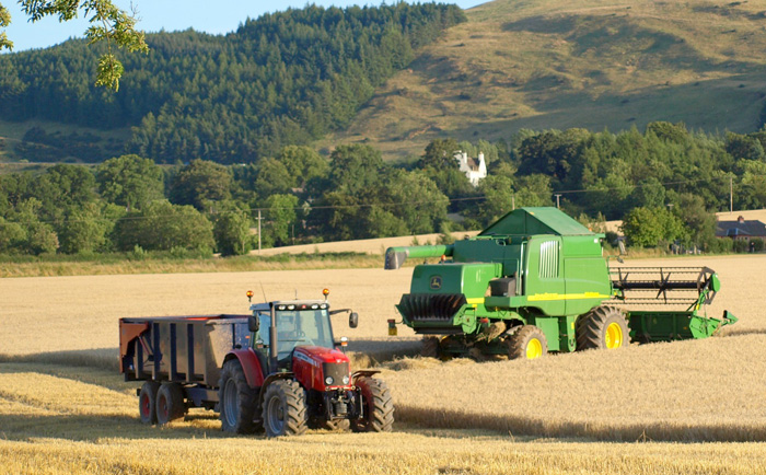 Agribusiness - Academic Courses that Yield the Most Successful People