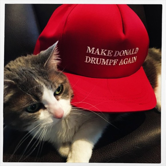 Pope Doesn t Want to Wear Her Make Donald Drumpf Again Hat for some reason