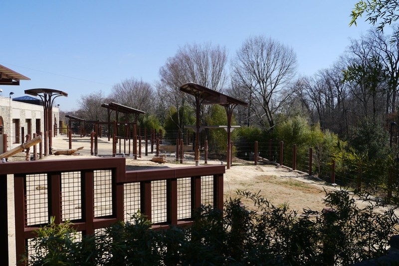 20130304 National Zoological Park, Washington DC 002