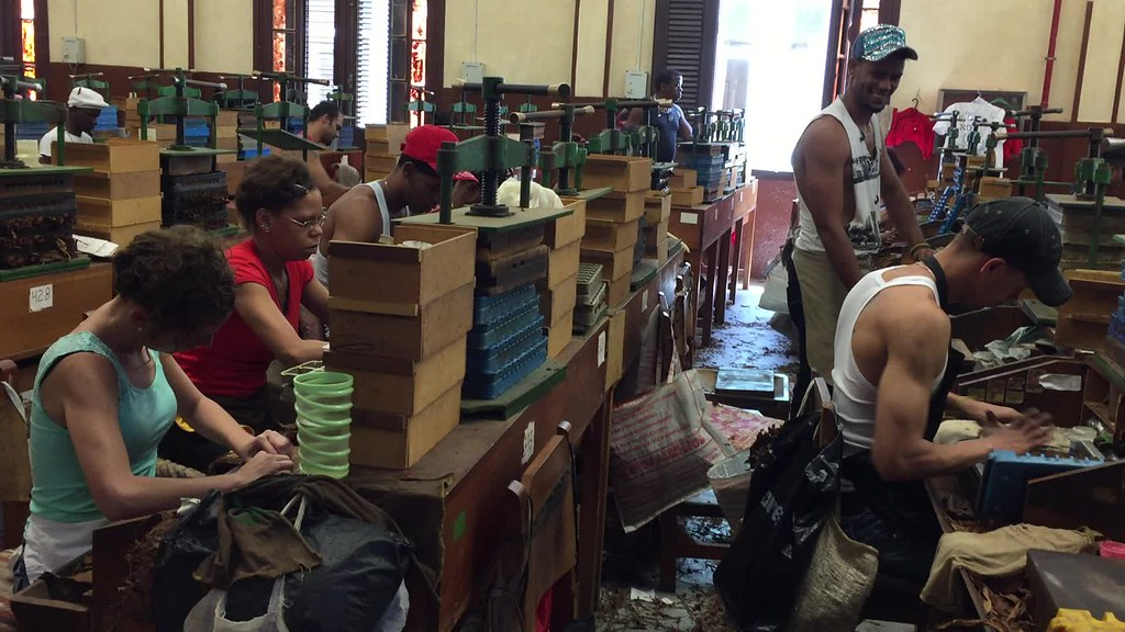 visita a la fábrica de puros de La Habana: Fabrica de Puros de La Habana en Cuba fábrica de puros de La Habana Visita a la fábrica de puros de La Habana en Cuba 26237180152 b51570fdde b