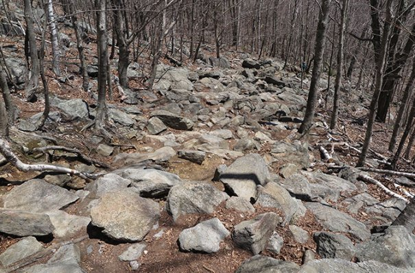White Cross Trail Rocks 3